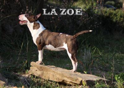 La Zoe