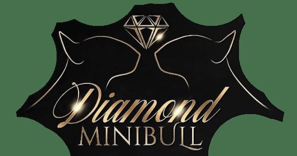 Diamond Minibull